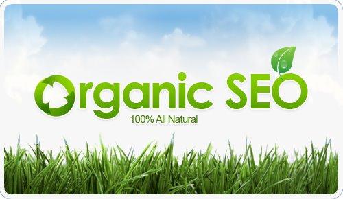 natural-organic-seo-services